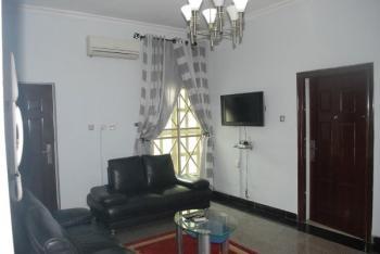 Well Furnished 1 Bedroom Apartment, Simeon Akinolu Crescent, Oniru, Victoria Island (vi), Lagos, Mini Flat Short Let