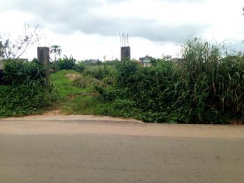a Suitable Land Measuring 100ft X 200ft, Iyase St, Off 2nd Ugbor G.r.a, Benin, Oredo, Edo, Land for Sale