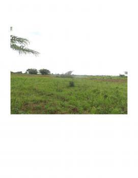 Farm Land Plantation of About 20 Hectares, Sanwojo, Igbogila Road, Ewekoro, Ogun, Mixed-use Land for Sale