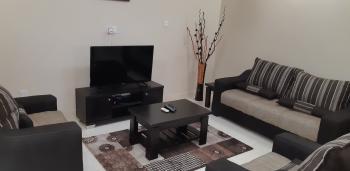 Luxury 2 Bedrooms Apartment, Off Constitution Avenue, Area 2, Garki, Abuja, Flat Short Let