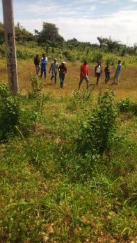 Affordable Plots of Land, Asegun Village, Folu Ise, Ibeju Lekki, Lagos, Residential Land for Sale