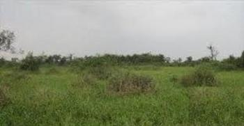 a Residential Dry Land Measuring 850sqm, Banana Island, Ikoyi, Lagos, Mixed-use Land for Sale
