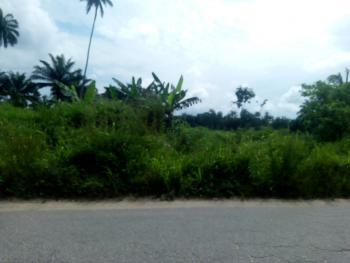 Plots/acres of Land, at Otomewo Community, Off Sapele Road, Okpe, Delta, Commercial Land for Sale