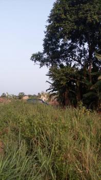 Acres of Land, Sagamu, Ogun, Mixed-use Land for Sale