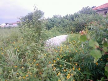 Land, Beside Mfm, Asero, Odeda, Ogun, Mixed-use Land for Sale