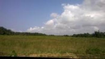 Corner Piece Plot Measuring Approximately 1100sqm, Pinnock Beach Estate, Osapa, Lekki, Lagos, Residential Land for Sale