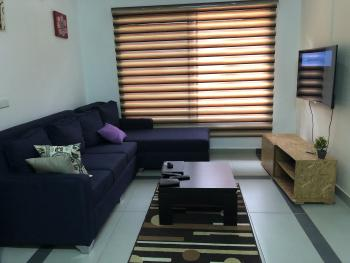 Famous (luxury One Bedroom Apartment), Off Adeniyi Coker, Victoria Island (vi), Lagos, Mini Flat Short Let