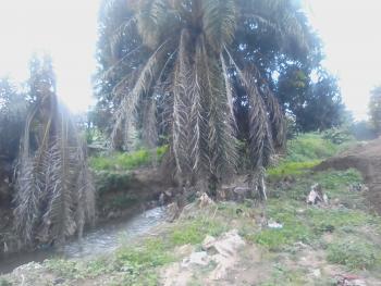 Recreational/resort Plot, 21 Road (adjoining 1st Ave.), Gwarinpa Estate, Gwarinpa, Abuja, Commercial Land for Sale