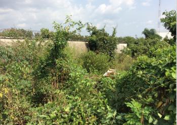 6574sqm Land, Bank and Office Layout, Udo Udoma Avenue, Uyo, Akwa Ibom, Land for Sale