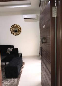 Luxury 1 Bedroom Flat, Lekki Phase 1, Lekki, Lagos, Mini Flat Short Let