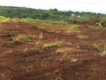 Premium and Well Located Land, Gra, Ogudu, Lagos, Land for Sale