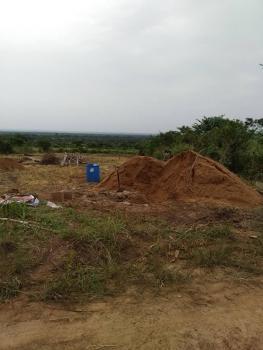 Cheap Land and Plantain Farm Forsale at Ewekoro Lga, Ogun State, Nigeria., Ewekoro, Ogun, Mixed-use Land for Sale