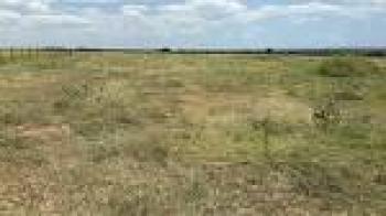 1.1 Hectare Commercial Plot, Jabi, Abuja, Commercial Land for Sale