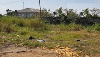 a Corner Piece Land of 3500sqm Land for Joint Venture., Ilupeju, Lagos, Mixed-use Land Joint Venture