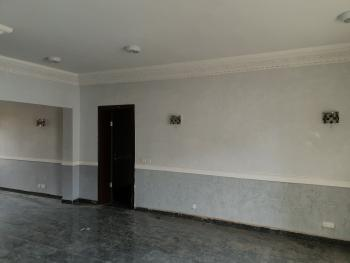 Luxury 3 Bedroom with Excellent Facilities in Asokoro, Asokoro District, Abuja, Flat for Rent