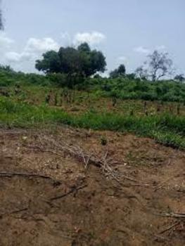 a Land Measuring 5,000acres, Abeokuta South, Ogun, Commercial Land for Sale