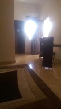 Luxury and Furnished 1 Bedroom with Generator, Area 11, Garki, Abuja, Mini Flat for Rent