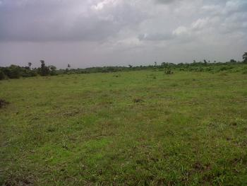 Cheap Dry Lands, Ewekoro, Ogun, Mixed-use Land for Sale