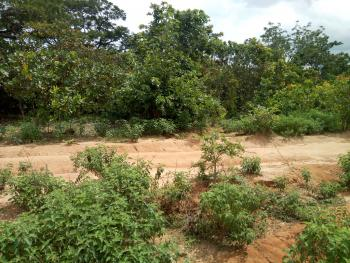 7081sqm Commercial Plot (guest House), After Berger Yard, Life Camp, Dape, Abuja, Hotel / Guest House for Sale