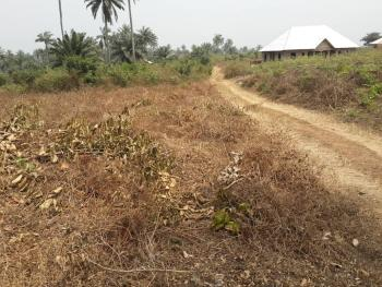 Plot of Land, Close to Arthur Jarvis University, Akpabuyo, Cross River, Residential Land for Sale
