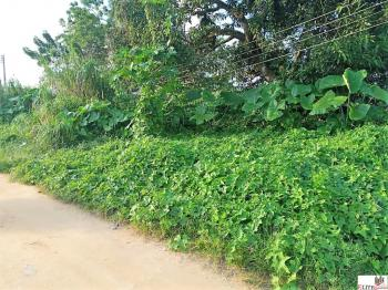 Dry Premium Land | Distress Sale, State Housing Estate, Calabar, Cross River, Mixed-use Land for Sale