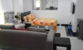Fully Serviced and Furnished Studio Apartment, Off Elegushi Beach Road-ikate, Lekki Phase 1, Ikate Elegushi, Lekki, Lagos, Mini Flat Short Let