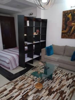 Furnished & Serviced Studio Apartment on The Ground Floor, Ikate Elegushi, Lekki, Lagos, Mini Flat Short Let