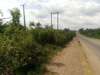 2 Acres of Industrial Land with Tarred Road Access, Beside Sayed Farms, Alomaja, Oluyole Lga, Ibadan, Oyo, Industrial Land for Sale