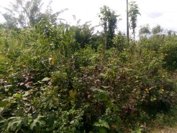 3 Acres of Industrial Land with Excellent Tarred Road Access, Close to Rom Oil Mills, Old Lagos Road, Oluyole Lga, Ibadan, Oyo, Industrial Land for Sale