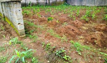 Land, Dawaki Extension, Dawaki, Gwarinpa, Abuja, Residential Land for Sale