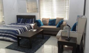 Fully Serviced & Furnished Studio Apartment in a Gated Estate, Off Elegushi Beach Road, Ikate, Lekki Phase 1, Lekki, Lagos, Mini Flat Short Let