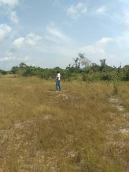 Exquisite Lands  with Registered Survey and Excision in Progress, Asegun, Ibeju Lekki, Lagos, Residential Land for Sale