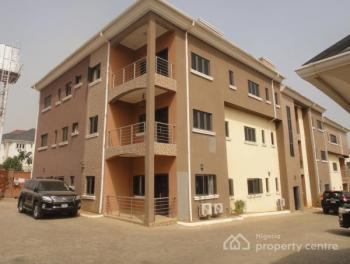 Brand New 2 Bedroom Serviced Flat with a Bq, En Suite, Dinning Area, Massive Parking Space, Ac,gen, Guzape District, Abuja, Flat for Rent