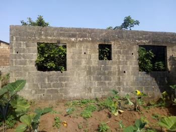 Uncompleted 4 Bedroom Setback Up to Roofing Level on a Full Plot of Land, Ipaja, Lagos, Detached Bungalow for Sale