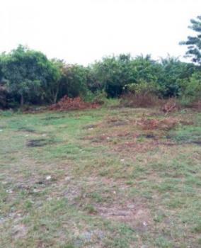Residential Land, Elerangbe Oke-egun Village, Ibeju, Lagos, Residential Land for Sale