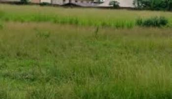 500 Square Meter (half Plot) Prime Plot Land, Old Ikoyi, Ikoyi, Lagos, Residential Land for Sale