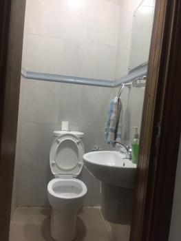 Conducive 2 Bedroom with Excellent Facilities, Dideolu Estate, Oniru, Victoria Island (vi), Lagos, Flat Short Let