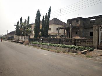 4-bedroom Detached Duplex at Skeletal Level in a Luxury Estate, Basic Estate, Lokogoma District, Abuja, Detached Duplex for Sale