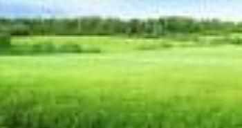 Acres of Land, Near Lasu, Iraye Oke, Epe, Lagos, Land for Sale
