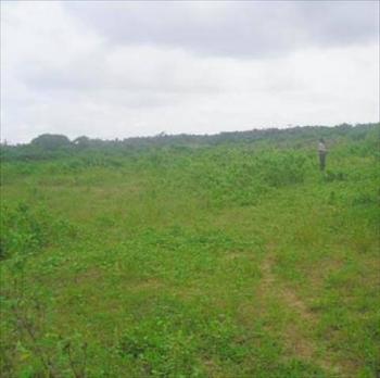 Massive Land, Owo Town, Nkanu, Enugu, Mixed-use Land for Sale