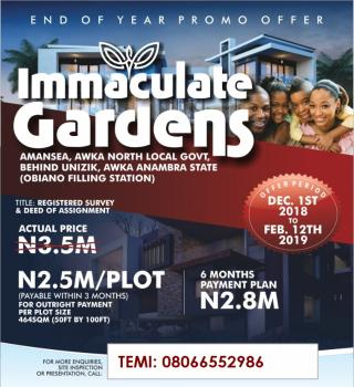 Immaculate Gardens, Amansea, Awka North Local Govt, Awka, Anambra, Mixed-use Land for Sale