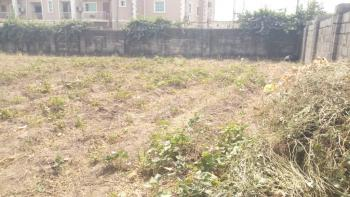 1813 Sqm of Land, for Commercial Purpose, Along  Airport Road, Jabi, Abuja, Commercial Land for Sale