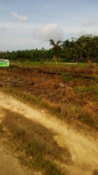Amazing Plots of Land This Easter at Affordable Price, Sangotedo, Ajah, Lagos, Land for Sale