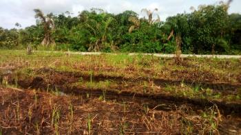 400 Sqm Land, Opposite Peace Garden Estate, Facing Emperor Estate Directly, Close to Novare Mall, Sangotedo, Ajah, Lagos, Commercial Land for Sale