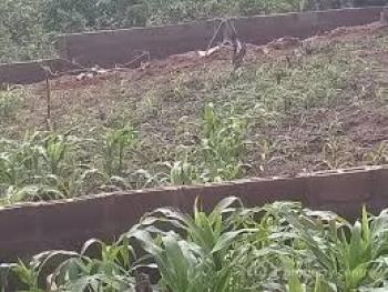 a Plot of Land Measuring 745 Square Meters, Abacha Estate, Ikoyi, Lagos, Residential Land for Sale