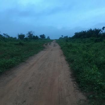 600 Acres Beside a Large Farm, Odo Ogun, Iseyin, Oyo, Industrial Land for Sale