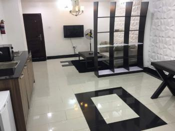Fully Serviced & Furnished 1 Bedroom Apartment in an Estate, Off Elegushi Beach Road, Ikate Elegushi, Lekki, Lagos, Mini Flat Short Let