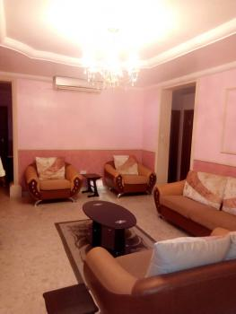 Fully Furnished and Serviced 2 Bedroom Flat, Asokoro District, Abuja, Flat for Rent