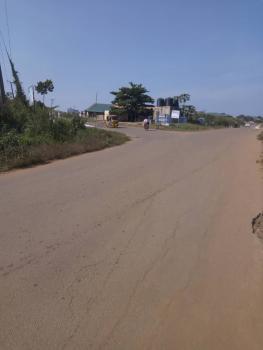 5 Acres of Farm Land, Godogbo Village, Akinyele, Oyo, Commercial Land for Sale