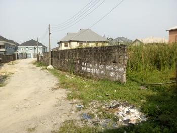 C of O 2 Plots of Land 3 Poles From The Express, Off Ado Road, Thomas Estate, Ajah, Lagos, Mixed-use Land for Sale
